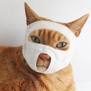 点眼補助 猫 めだしマスク