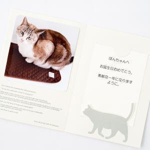 メッセージカード 台紙セット|nekozuki