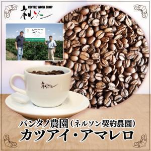 カツアイ・アマレロ 200g【自家焙煎コーヒー専門店 ネルソンコーヒー】|nelson