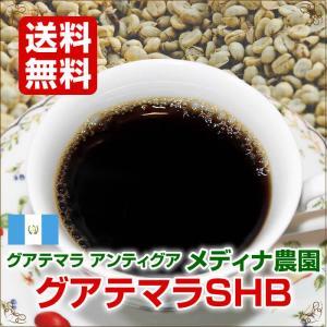 グアテマラSHB 200g【自家焙煎コーヒー専門店 ネルソンコーヒー】|nelson