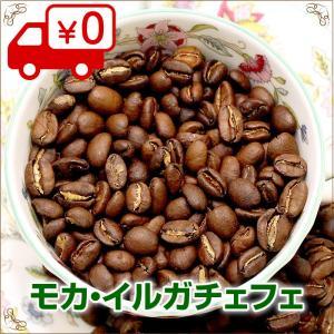 モカイルガチェフェ 200g【自家焙煎コーヒー専門店 ネルソンコーヒー】|nelson