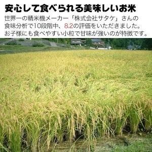 新米 孟宗竹チップ&製法特許竹酢液使用 てんこもり 新米 玄米 5kg(精米できます) 8年目 乳酸発酵|nemuriestore|02