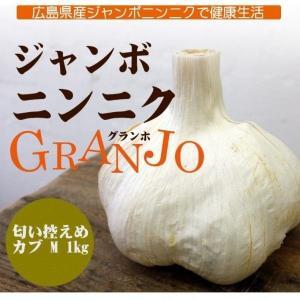 ジャンボにんにく カブMサイズ 1kg GRANJO ドイグランホ 広島 三原市|nemuriestore