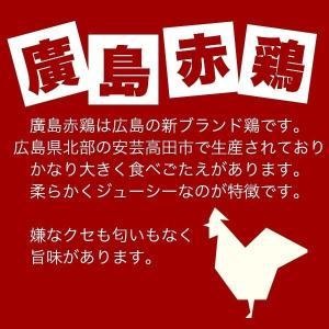 仕出し屋さんが作った 豆乳和だし入りレッドカレー 1パック 200g タイカレー 辛い 廣島赤鶏 送料無料 1000円以下 600円 ぽっきり|nemuriestore|02