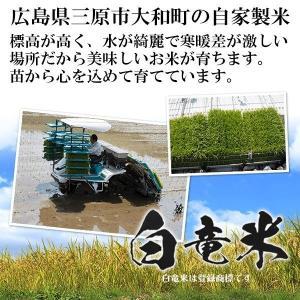 ヒノヒカリ 5キロ 29年度産 白竜米 広島県三原市大和町産 5kg 注文後に精米|nemuriestore|02