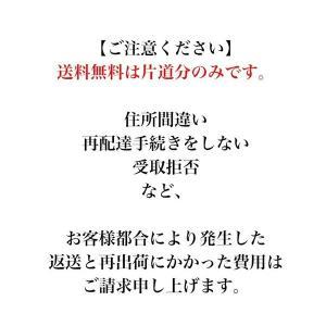 ムツワの古漬け 7種類から選べる3点セット 漬物 広島菜 激辛 nemuriestore 07