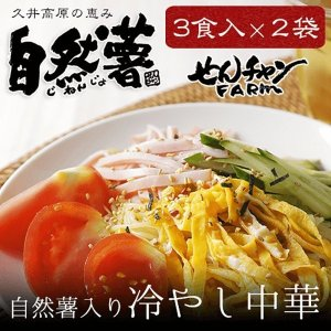 せんチャンファーム 自然薯 冷やし中華 スープ付き 3食×2袋 送料無料 広島 三原市 代引き不可 |nemuriestore