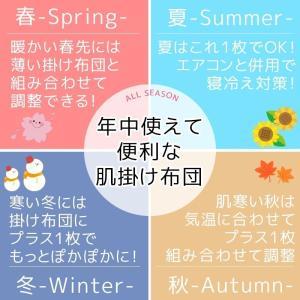 肌掛け布団 夏 ダウンケット シングル 西川 ...の詳細画像2
