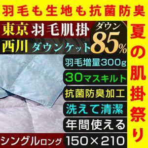 肌掛け布団 夏 ダウンケット シングル 西川 洗える 羽毛 ダウン 85% 300g入り  抗菌 防臭 東京西川の写真