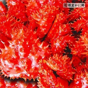 若花咲蟹 1.2kg前後 (かに カニ 蟹 送料無料)|nemurokanisen|02