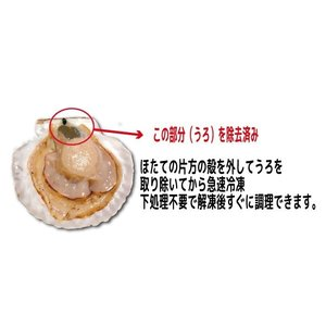 訳あり  片貝ほたて 20枚 (北海道産 根室産 ほたて 帆立 ホタテ BBQ)|nemurokanisen|04