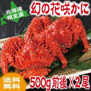 北海道産 根室 花咲かに(オスメス無選別) 500g前後×2尾 カニ かに 根室産 送料無料