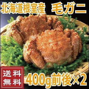 北海道産 毛ガニ 400g前後×2尾 (北海道 送料無料 かに カニ 蟹)