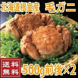 北海道根室産 毛蟹 500g前後×2尾 (送料無料 北海道 ...