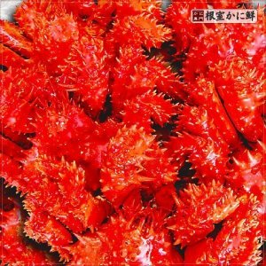 若花咲蟹(オス) 1.4kg前後 (かに カニ 蟹)|nemurokanisen|03