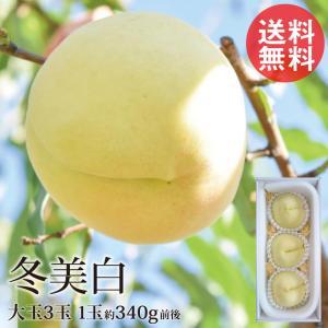 冬に食べられる白桃 冬美白 とうびはく 大玉3玉 1玉約300g 岡山 冬桃 白桃 産地直送