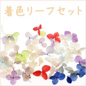 カラーリーフセット 着色リーフ ドライフラワーのような葉 ネイルアートの模様付け用 白い押し葉 押し花 3Dネイルズ レジンパーツ|neocolle