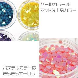 丸ホログラム珍しいパステルカラー&蛍光カラーの2mm12色セットケース入り ジェルネイルなどに|neocolle|03