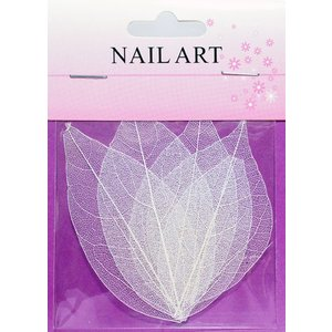 ドライリーフ ホワイト #5 ネイルアートの模様付け用 白い押し葉 押し花|neocolle