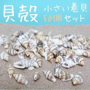 貝殻 小さい巻貝 50個前後入り 通し穴つき 手芸 ビーズハンドクラフト 工作 アクセサリー手作りなどに レジンクラフト レジンパーツ レジン封入用に|neocolle