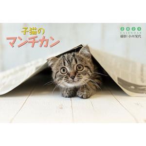 [グッズ]/カレンダー/子猫のマンチカン [2021年カレンダー]|neowing