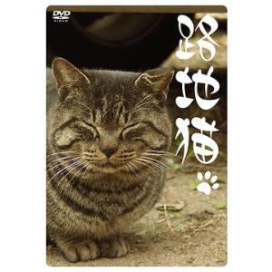 [DVD]/【送料無料選択可】趣味教養/路地猫|neowing
