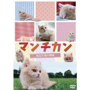 [DVD]/趣味教養/マンチカン 〜短足子猫の物語〜|neowing