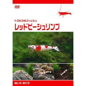 [DVD]/【送料無料選択可】趣味教養/レッドビーシュリンプ 飼い方・育て方|neowing