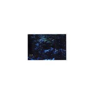 【送料無料選択可】月の森 屋久島の光について/山下大明/著(単行本・ムック)