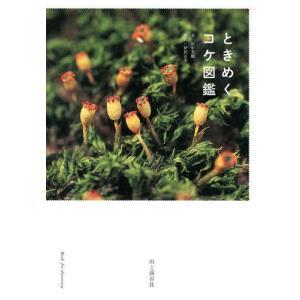 ときめくコケ図鑑 (Book for discovery)/田中美穂/文 伊沢正名/写真(単行本・ムック)|neowing