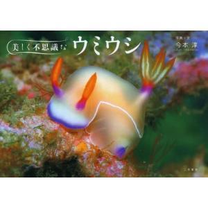 きれいでかわいいウミウシたちの最新写真集!伊豆、越前、真鶴、八丈島などにいる新しい仲間も収録!!