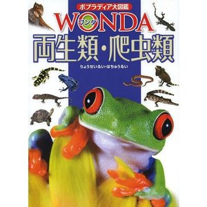【送料無料選択可】両生類・爬虫類 (ポプラディア大図鑑WONDA)/森哲/監修 西川完途/監修