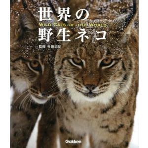 """知ってる?""""サーバル""""以外のカッコイイ野生ネコ&人気タレント猫"""