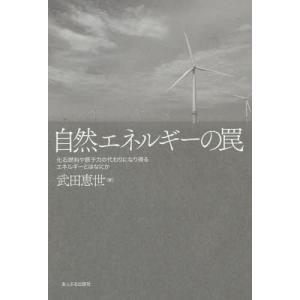 自然エネルギーの罠 化石燃料や原子力の代わりになり得るエネルギーとはなにか/武田恵世/著