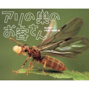 アリの巣のお客さん/丸山宗利/文 小松貴/写真 島田拓/写真