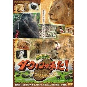 [DVD]/【送料無料選択可】邦画/劇場版 ダーウィンが来た! アフリカ新伝説