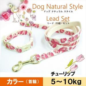 送料込み 5〜10kg小型犬用 お花の首輪&リード Sチューリップ フルーリ ペッツルート メール便|nepet-shop