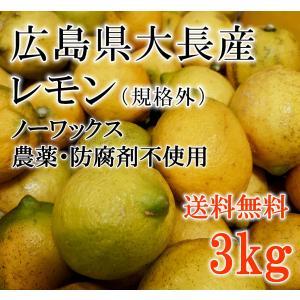 話題の広島県産/大長(おおちょう)産訳ありレモンを産地直送でお届けいたします。 防腐剤不使用・ノーワ...