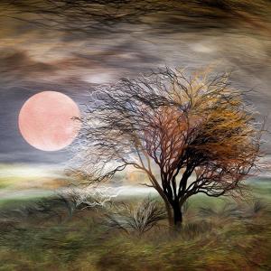 絵画 ネルバ作「月、薔薇色」117-295 ジクレー版画|nerva