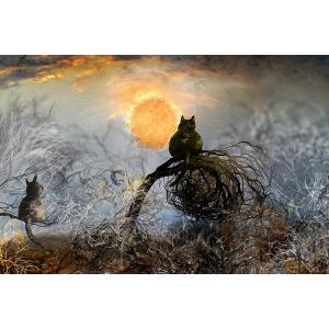 絵画 「夜空の毛糸玉」117-298 ネルバ作 ジクレー版画|nerva