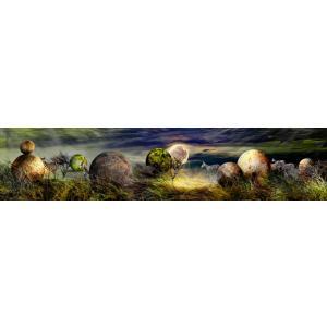 絵画 ネルバ作「シマウマが光体と出逢える場所」117-301 ジクレー版画|nerva