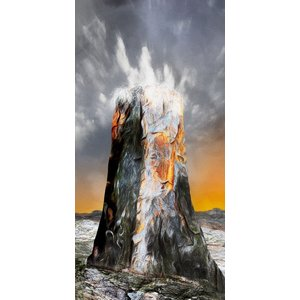 絵画 「命みなぎる岩」117-303 ネルバ作 ジクレー版画 北欧アート|nerva