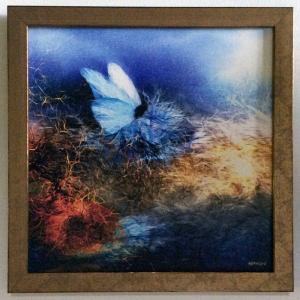 額縁付き 絵画 「露払いの青い蝶」317-299 ネルバ作 ジクレー版画|nerva
