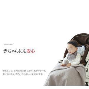 ( コットン )マツの木コットン - ある日シリーズ-【 商用利用可 】 nesshome 05