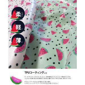 ( 洗えるラミネート生地 ) おいしいスイカ(Watermelon)ラミネート【 手作り 手芸 フルーツ柄 】【 商用利用可 】|nesshome|04
