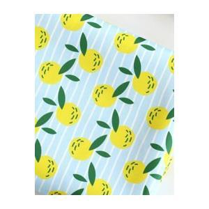 【かばん生地】キンカンKABAN Fabric(生活防水生地/幅150cm)|nesshome|02