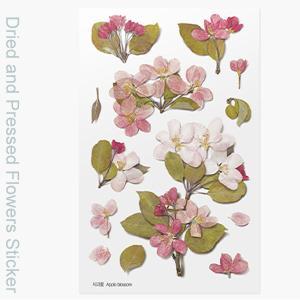 ( ドライフラワー ステッカー ) りんご花 押し花スタイルステッカー 【 商用利用可 】|nesshome