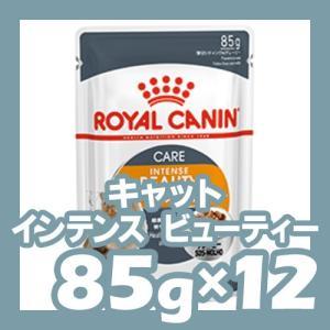 ロイヤルカナン FHN-WET インテンスビューティー 成猫用 85g×24個