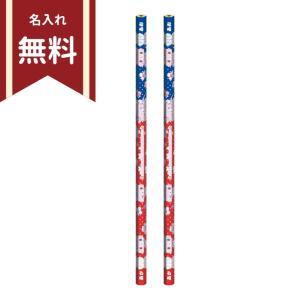 ミュークルドリーミー 赤青鉛筆 2本組 4901772228059 名入れ無料 新入学文具|net-shibuya