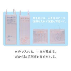 [送料無料][2枚セット]BIY 防災バック 災害 61BIY [M便 1/1]|net-shibuya|04